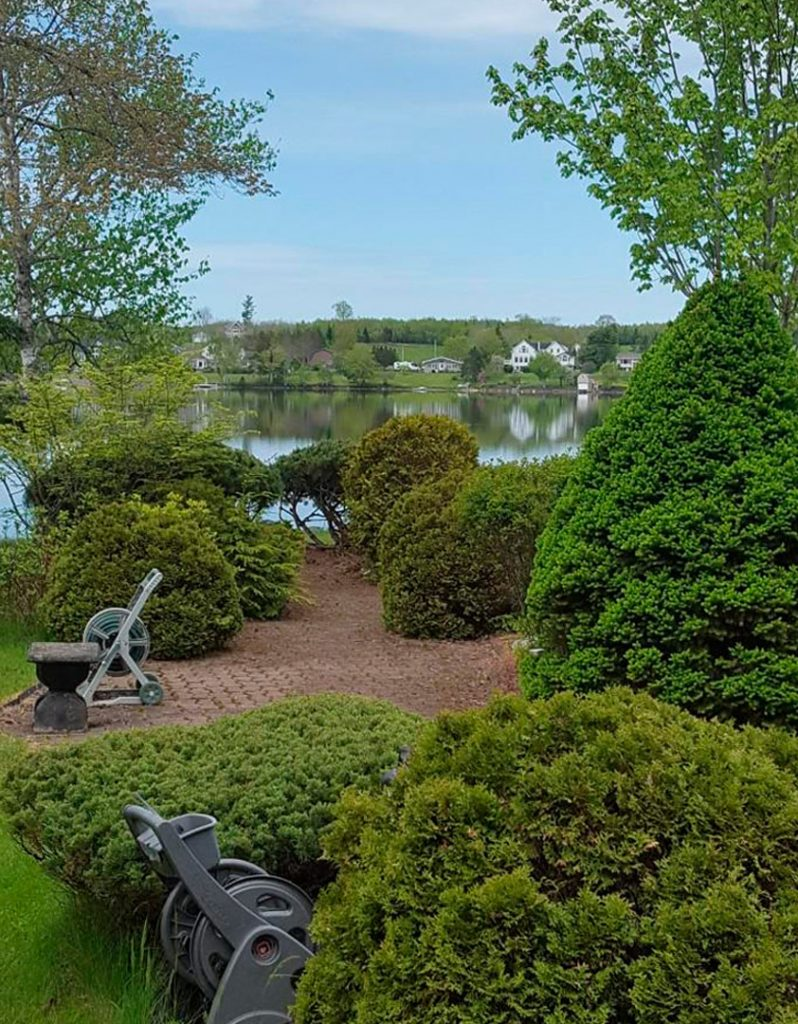 Garden at the lakehouse location.