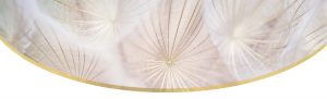 Header graphic - gold and cream coloured dandelion seeds